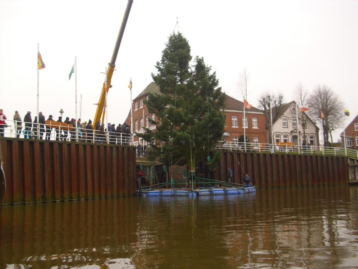Aufstellen des Weihnachtsbaumes Nov. 2014