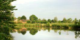Vortrag über die Ostfriesische Landschaftsvielfalt